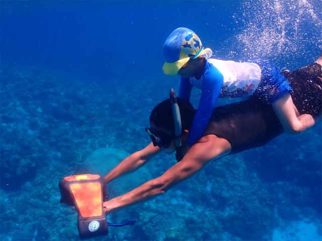 海 慶良間 ダイビング
