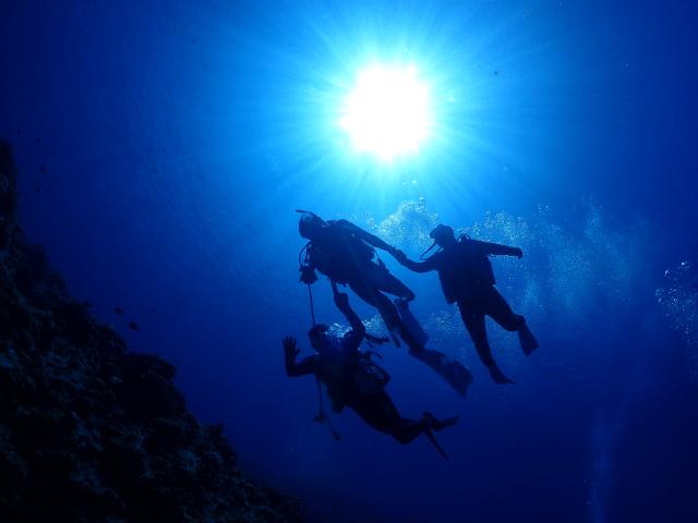 海 沖縄 観光 ダイビング