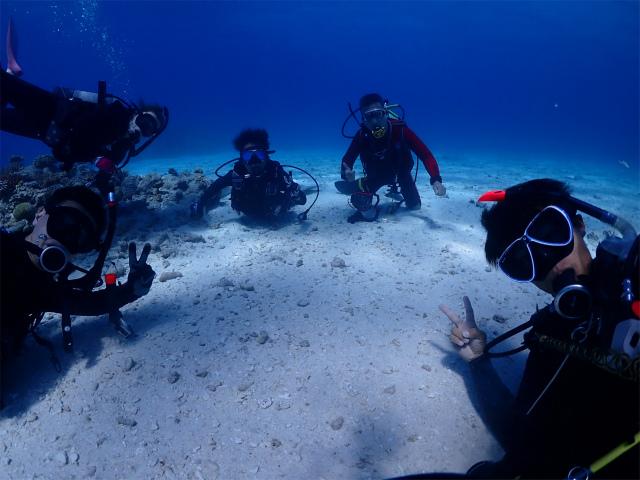 慶良間 チービシ ウミガメ ダイビング
