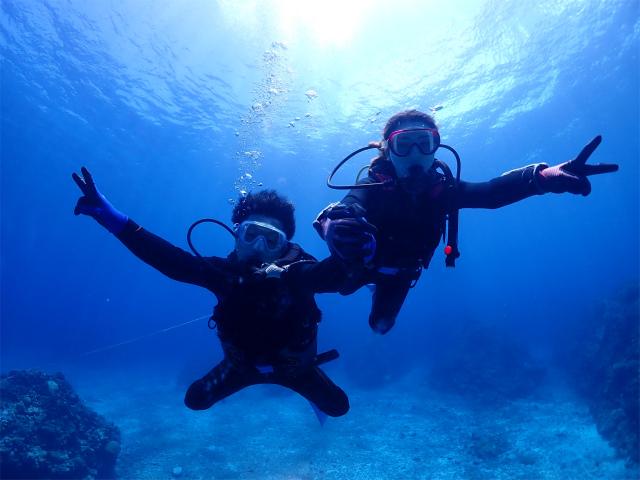 慶良間 ウミガメ 口コミ 沖縄 ダイビング