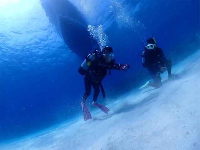 慶良間 海 景色 ダイビング 沖縄