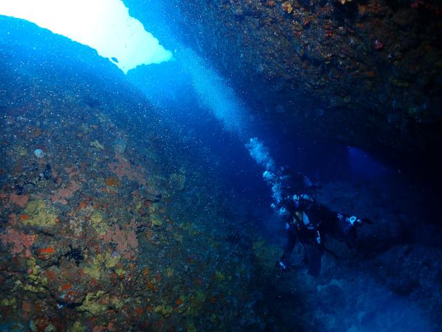 残波 海 ダイビング 沖縄