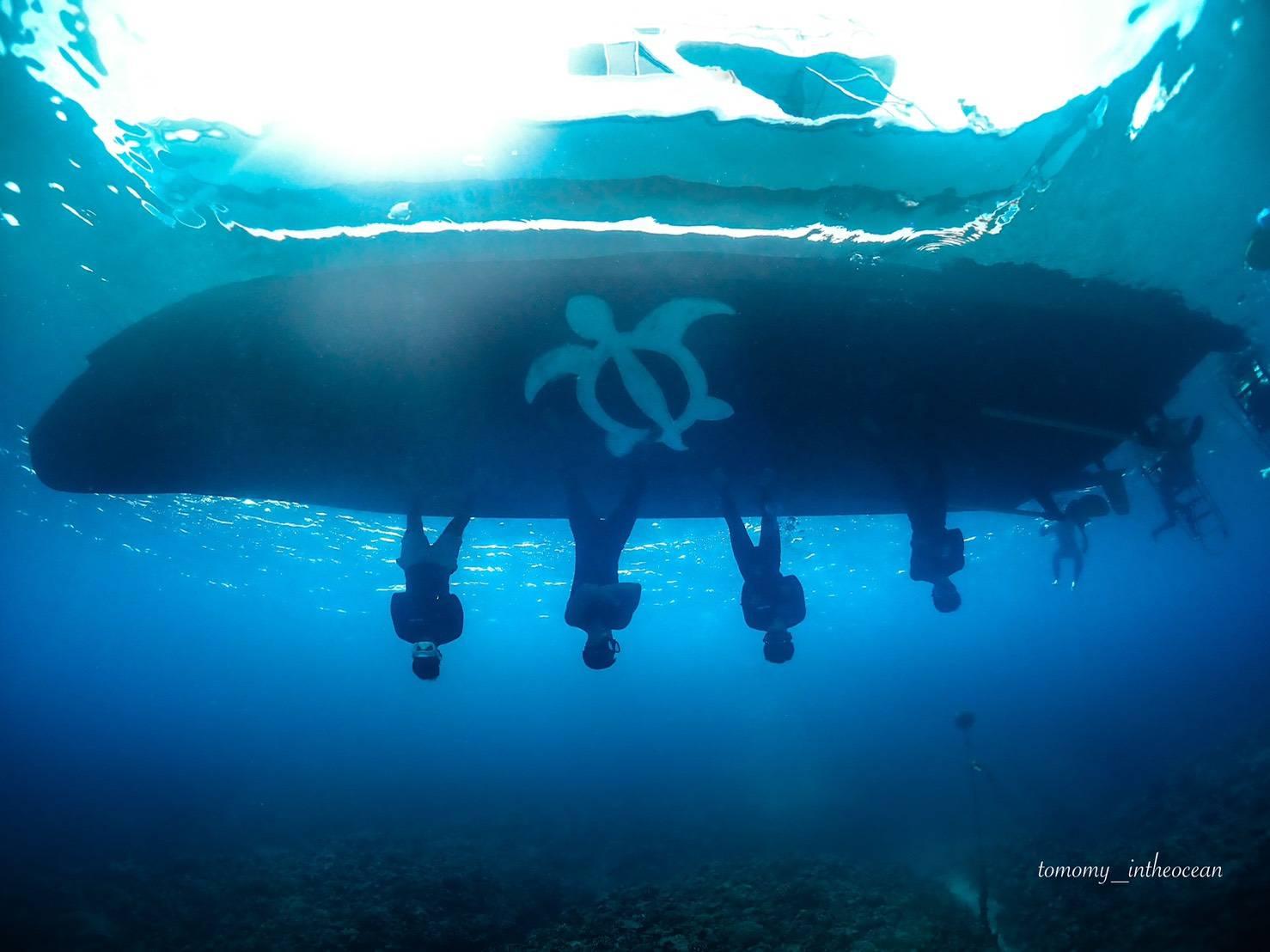 沖縄 ダイビング 慶良間 観光