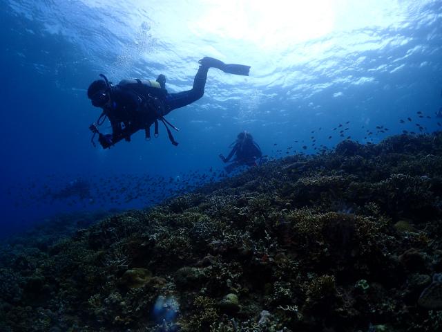 万座 ダイビング 沖縄 観光 景色