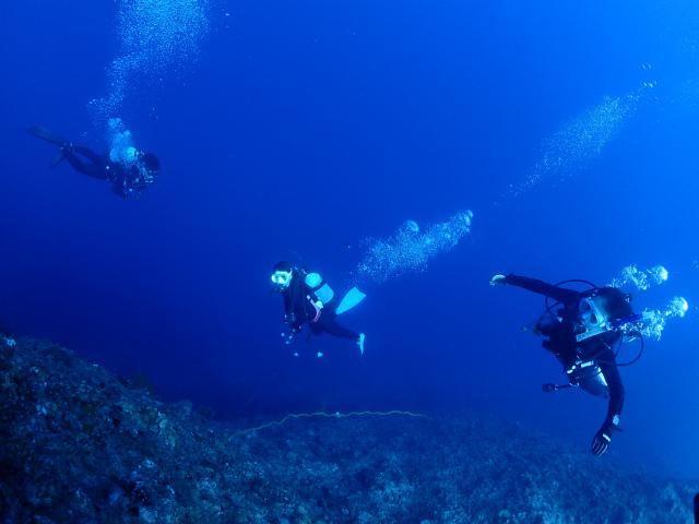 慶良間 万座 観光 ダイビング 沖縄