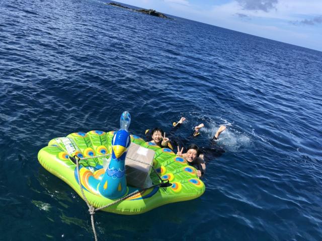 慶良間 ダイビング 景色 観光 沖縄