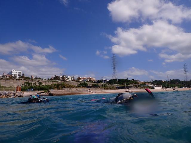 ビーチ ダイビング 沖縄 慶良間 観光