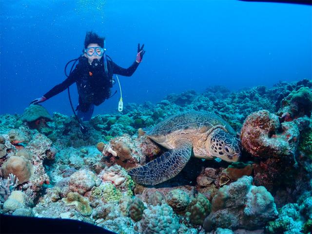 慶良間 海 ダイビング 沖縄 観光