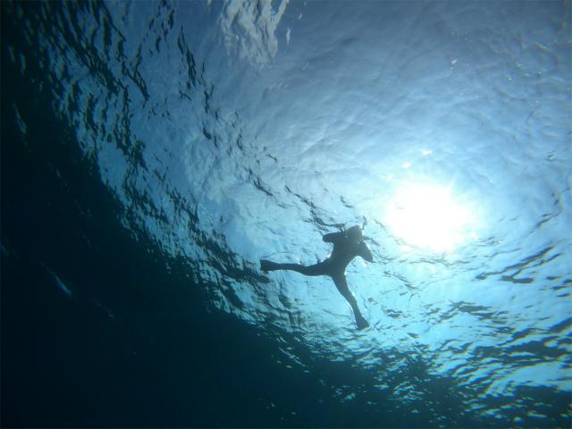 沖縄 ボート 貸し切り ダイビング 慶良間