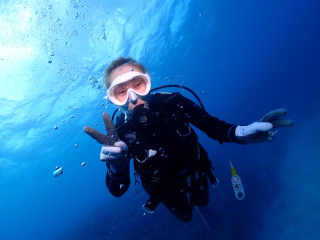 慶良間 チービス 沖縄 慶良間 ダイビング