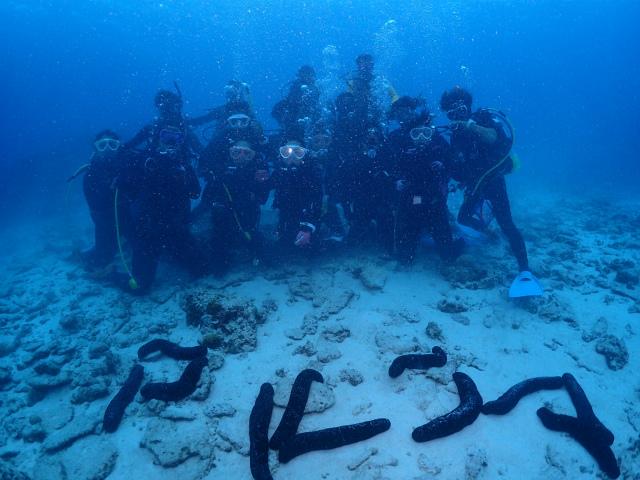 ダイビング 沖縄 ツアー 観光 北部