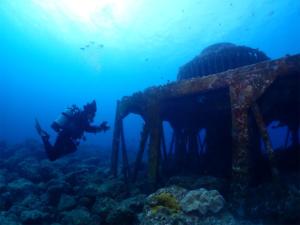 慶良間 近海 ダイビング 沖縄 観光