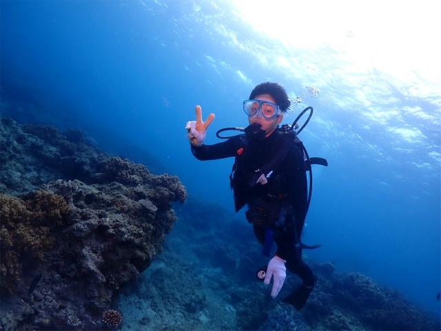 沖縄 本島 ダイビング 慶良間 マクロ