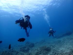沖縄 ダイビング 砂辺 ライセンス講習 PADI