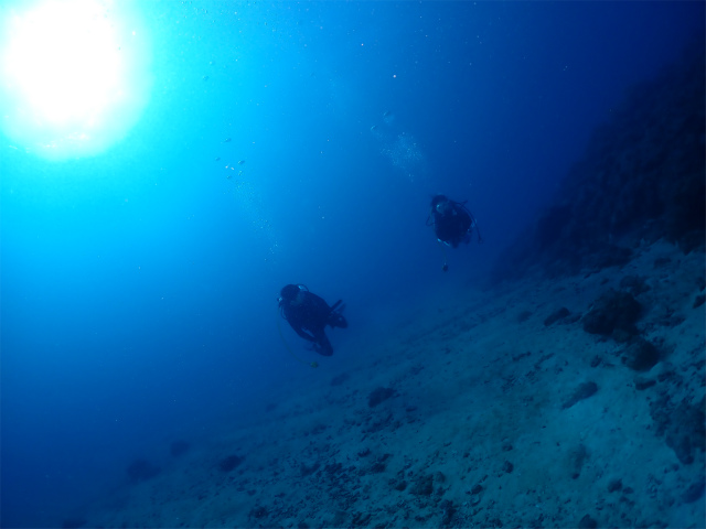 沖縄 ダイビング 慶良間 近海 ボート