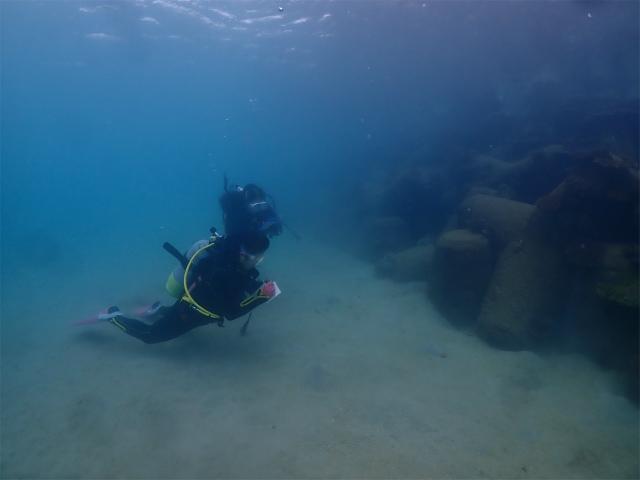 慶良間 沖縄 ビーチ ダイビング 観光