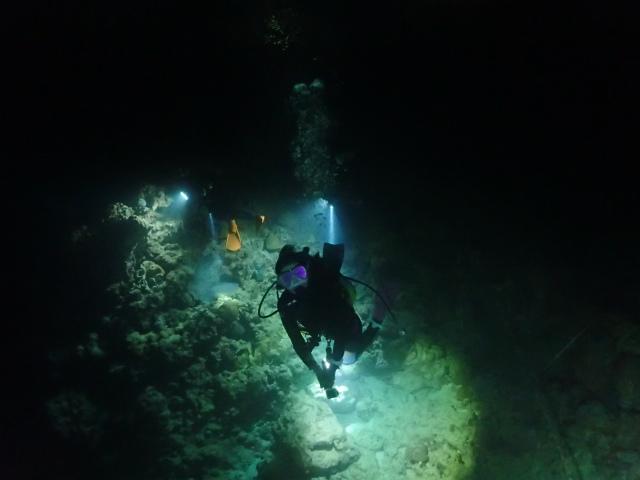 沖縄 ダイビング 砂辺 ナイトダイビング