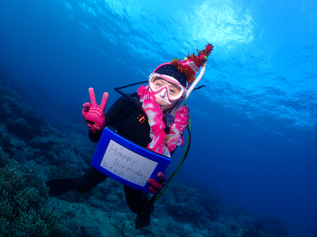 沖縄 誕生日 ダイビング 観光