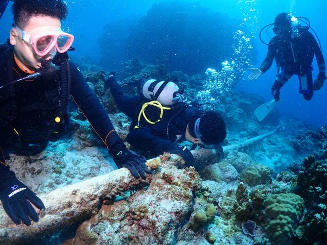 慶良間 体験 ダイビング 沖縄 観光