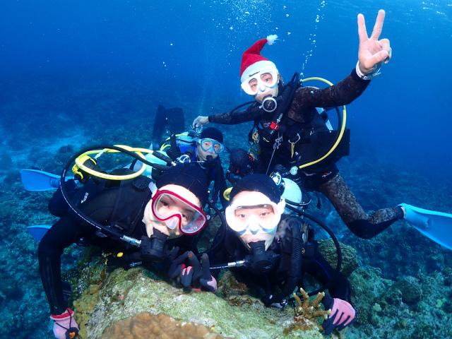 慶良間 沖縄 観光 景色 ダイビング