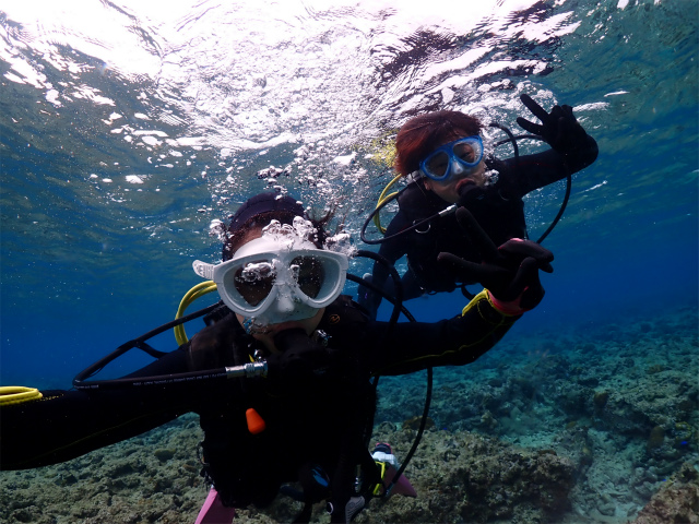 ビーチ体験ダイビング アルファダイブ