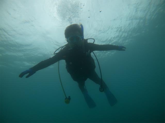 ダイビング 沖縄 観光 慶良間 ビーチ