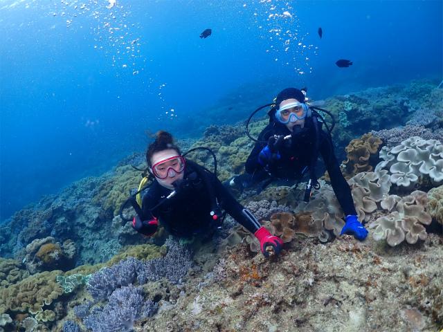 沖縄 ダイビング 体験 観光 海