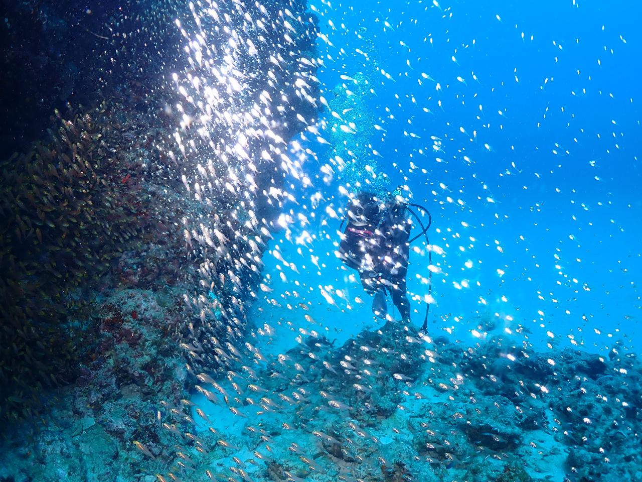 糸満 ダイビング 沖縄 観光 海