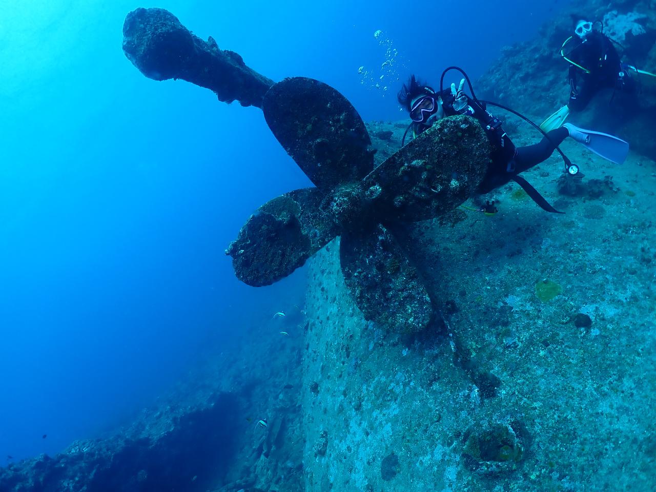 沖縄 観光 ダイビング ボート 海