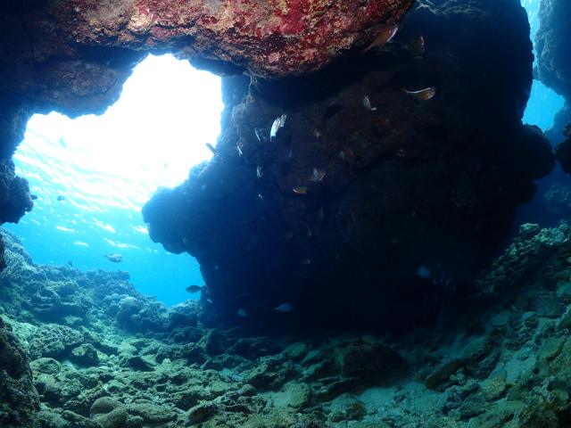 沖縄 ビーチ 観光 ダイビング 海