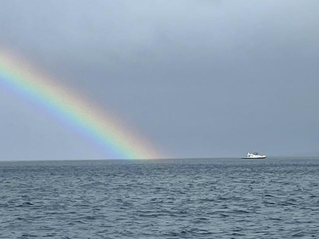 ダイビング 沖縄 観光 体験 海