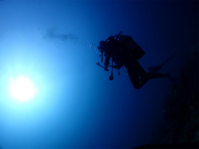 沖縄 ダイビング 本島 観光 海
