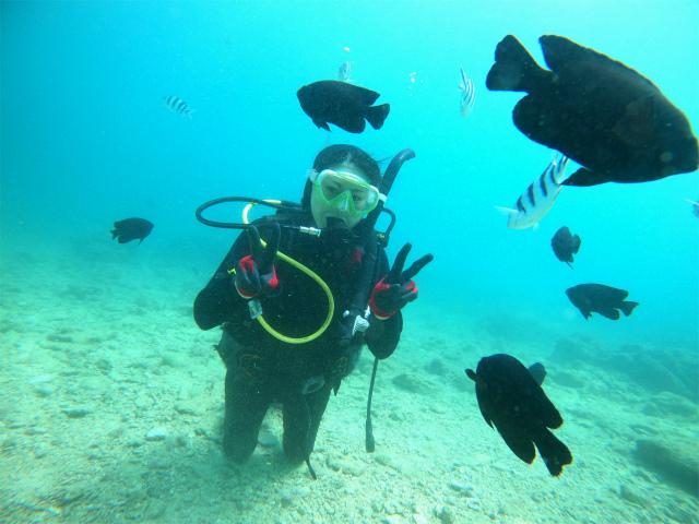 沖縄 ダイビング 海 砂辺 北谷