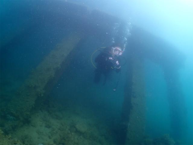 沖縄 ダイビング 海 観光 ビーチ