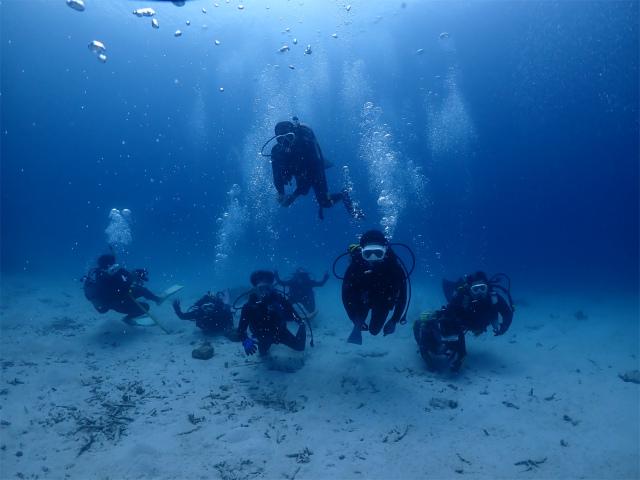 沖縄 体験 ダイビング 観光 海