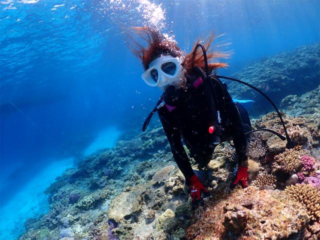 沖縄 ダイビング 慶良間 チービシ 海