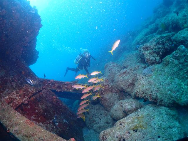 沖縄 ダイビング 北谷 浜川 本島近海ボートFUNダイビング