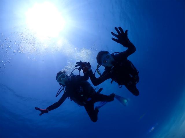 沖縄 慶良間 ダイビング 観光 体験