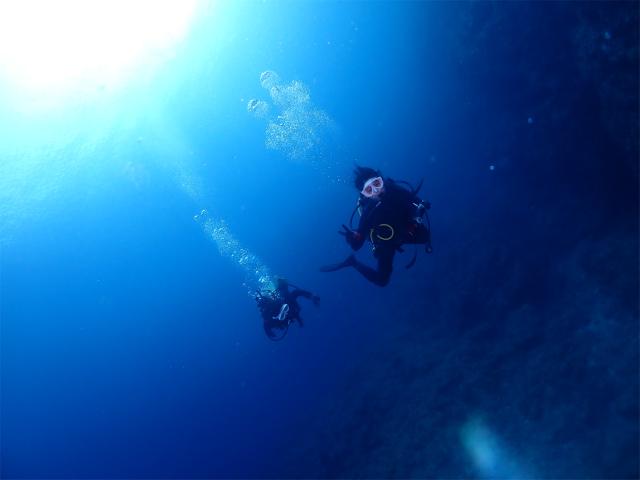 沖縄 万座 慶良間  ダイビング 海