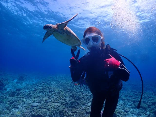 慶良間 ダイビング 体験 沖縄 観光