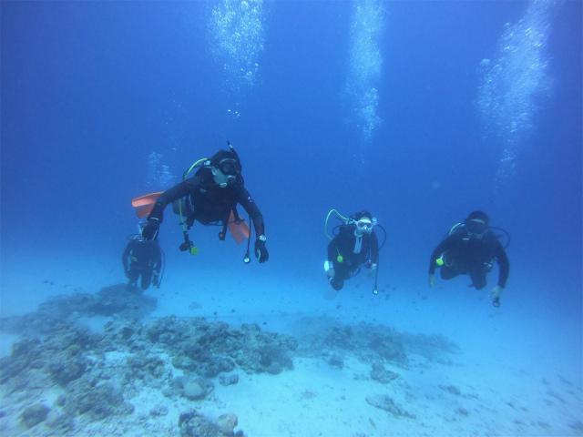 慶良間 沖縄 観光 ダイビング FUN