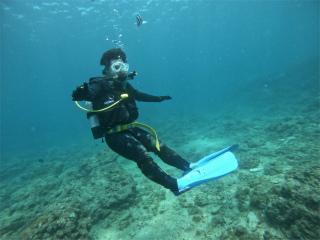 慶良間 FUNダイビング 講習 観光 海