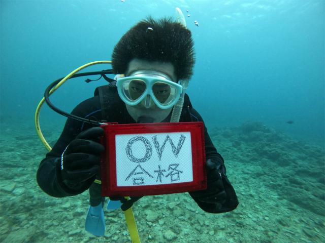 慶良間 講習 ダイビング 沖縄 観光