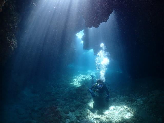 沖縄 慶良間 ダイビング 体験 観光