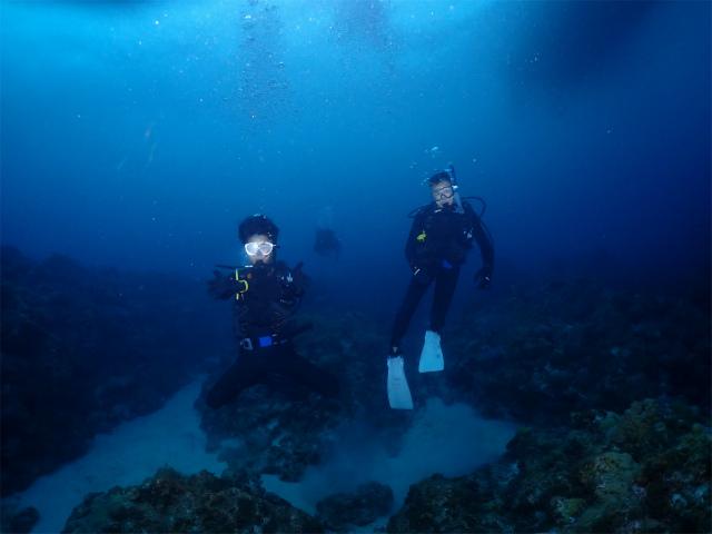 慶良間 自社船 貸し切り ダイビング 海