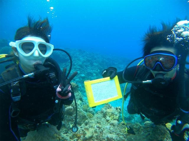 沖縄 慶良間 体験ダイビング ダイビング ライセンス講習