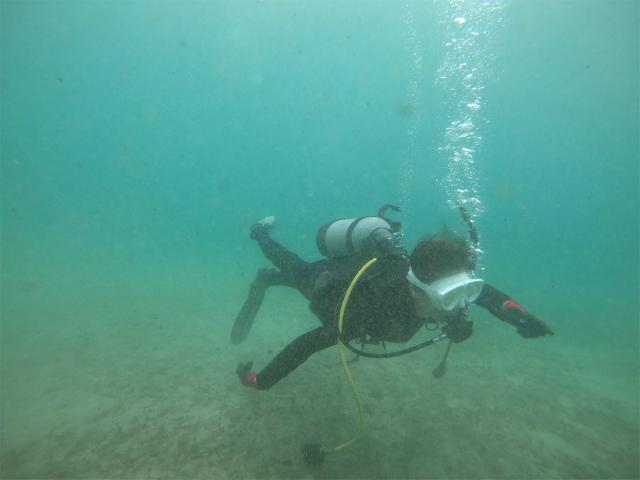 沖縄 ダイビング ライセンス