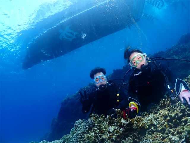慶良間 沖縄 ダイビング 観光 海