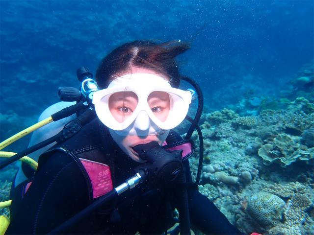 沖縄 ダイビング 景色 観光 海
