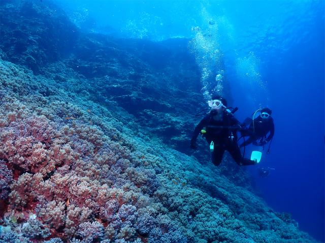 沖縄 ダイビング 慶良間 観光 ボート